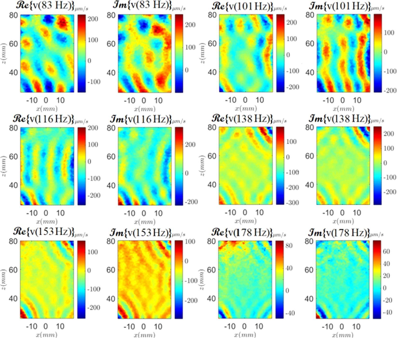 Diffuse shear wave spectroscopy