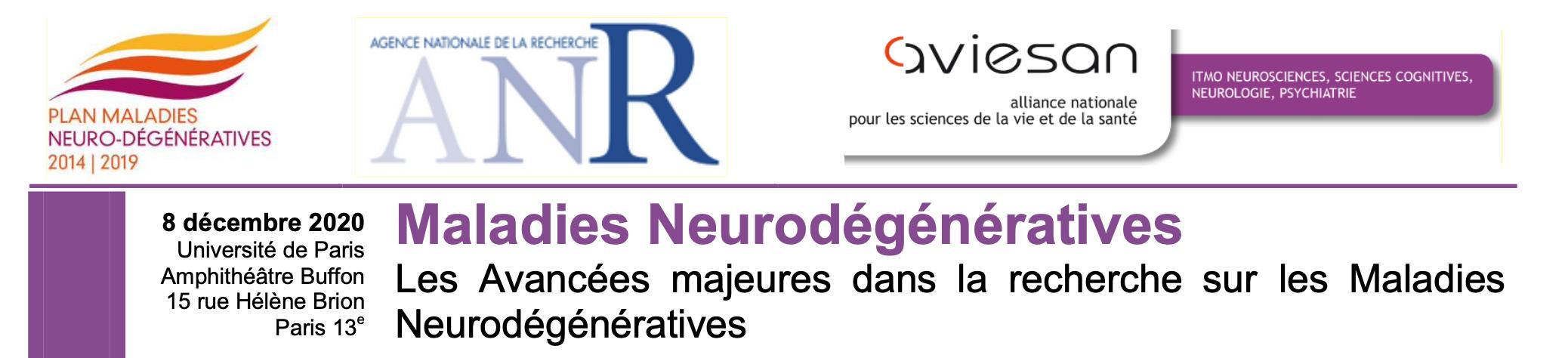 Les Maladies Neurodégénératives
